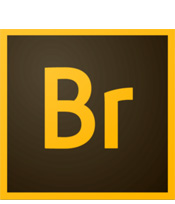 bridge-cc-logo
